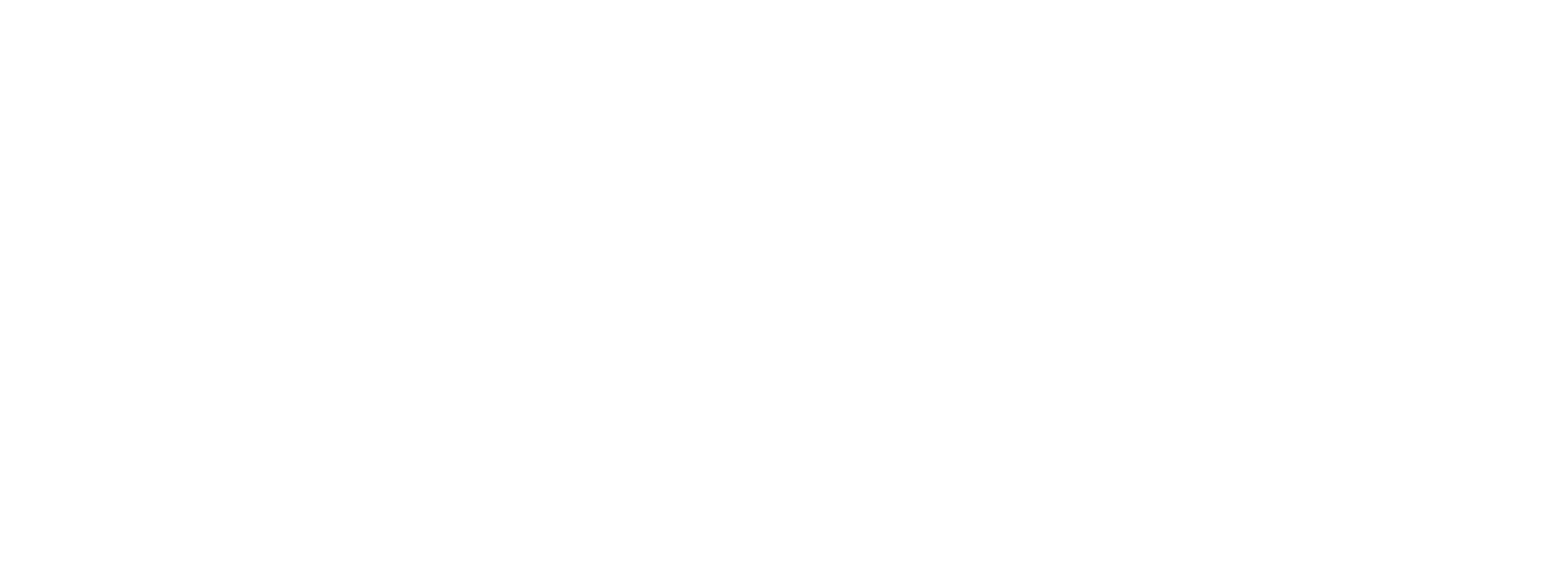 MailChimp Partner logo